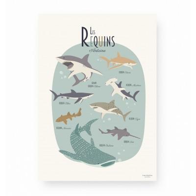 Les Requins - Personnalisable