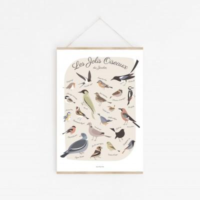 affiche oiseaux des jardins, affiche oiseaux de france, lutin petit pois