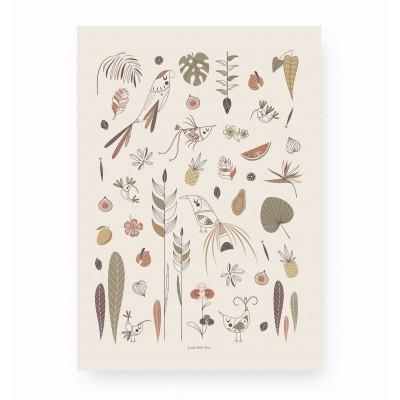 affiche enfant oiseaux tropicaux, affiche enfant jungle, affiche enfant jardin enchanté, lutin petit pois