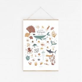 affiche enfant baleines, affiche enfant mer et océan, affiche enfant animaux de la mer