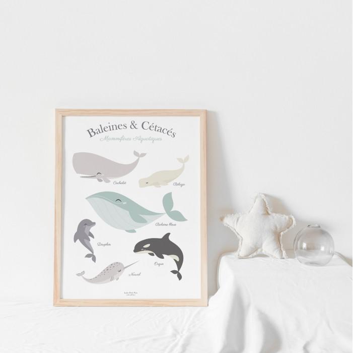 affiche enfant, affiche bébé, affiche enfant baleines et cétacés lutin petit pois
