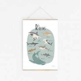 affiche enfant requins, affiche enfant poissons, affiche enfant mer et océan, lutin petit pois