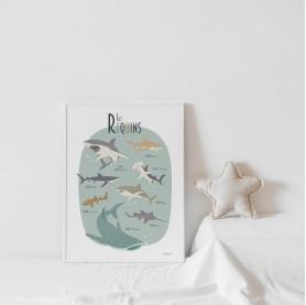 affiche enfant requins, affiche bébé animaux marins, affiche animaux de la mer, lutin petit pois