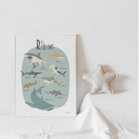 affiche enfant requins, affiche enfant animaux marins, affiche requins, poster shark, lutin petit pois