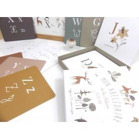 cartes alphabet en lettres cursives et lettres scriptes, coffret alphabet montessori