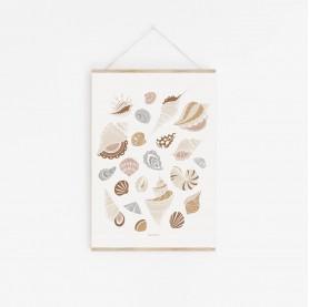 affiche coquillages, affiche enfant coquillages, shells, lutin petit pois, affiche enfant animaux marins